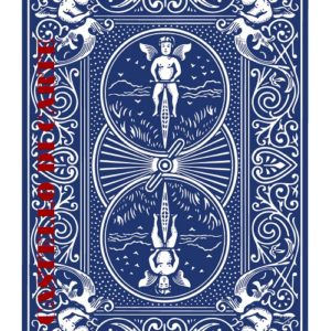 bicycle-808-rider-back_dorso-blu