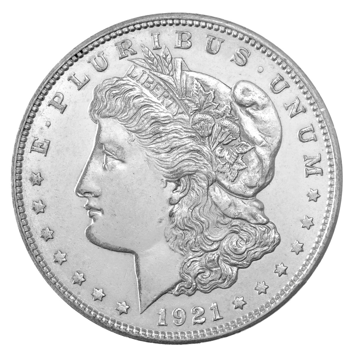 Dollar_Morgan_USA (1)