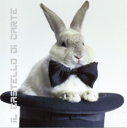 Magic_Rabbit